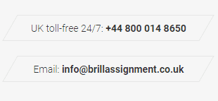 BrillAssignment.co.uk Support